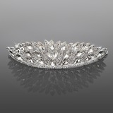 Gorgeous Alloy With  Rhinestones Bridal Tiara (042016700)