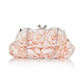 (Champagne)Gorgeous Silk Evening Handbags/ Clutches (012013423)