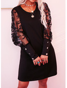 Lace Solid Shift Long Sleeves Mini Little Black Casual Elegant Tunic Dresses