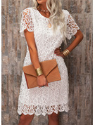 Lace Solid Round Neck Short Sleeves Mini Dresses
