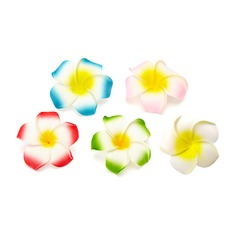 Lovely Artificial Flowers (set of 50)