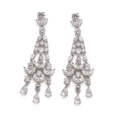 Exquisite Zircon Ladies' Earrings