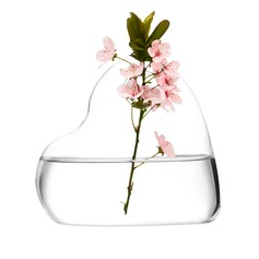 Sweet Heart Glass Vases(Flowers Not Include)