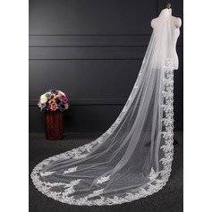 One-tier Lace Applique Edge Cathedral Bridal Veils With Applique (006120951)